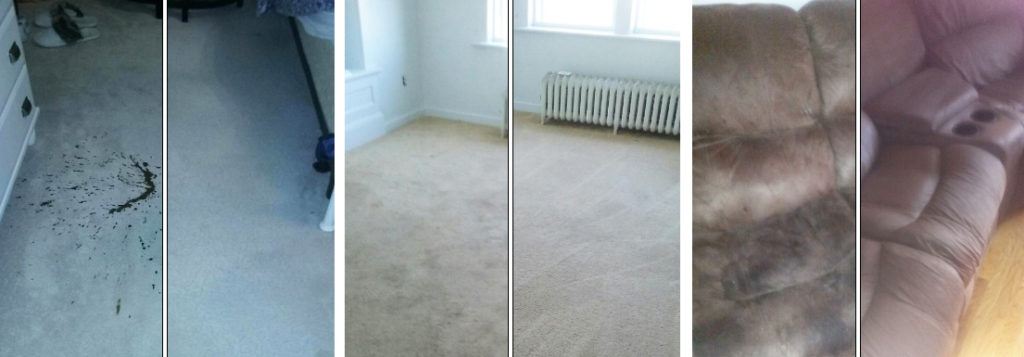 Carpet Cleaning & sofas